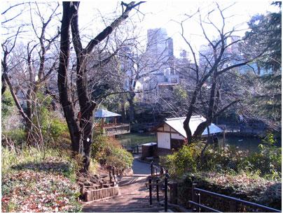 渋谷区立 鍋島松涛公園